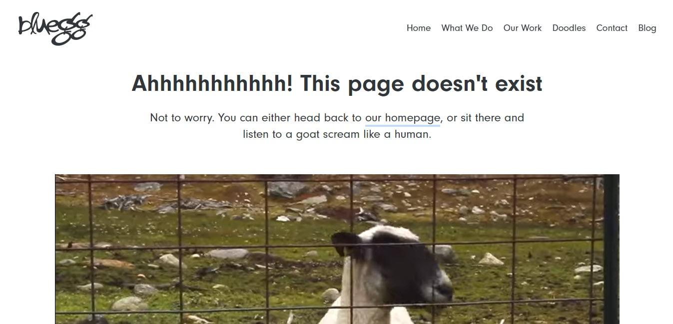 Bluegg 404 Problem Page