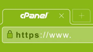 How to Generate CSR using cPanel