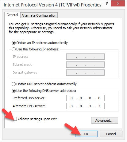 Preferred DNS Server and Alternate DNS Server